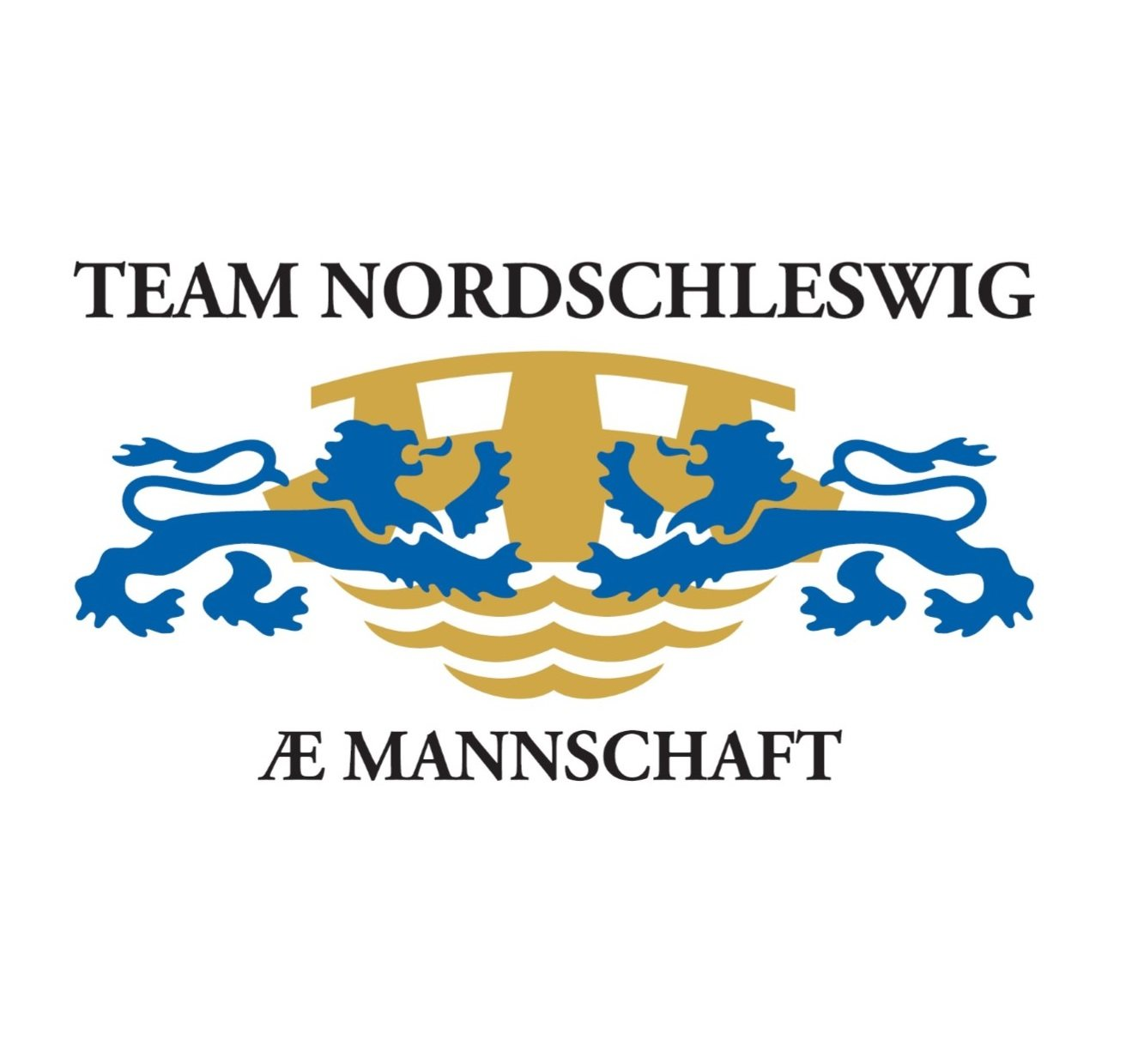 Logo: Team Nordschleswig - Æ Mannschaft