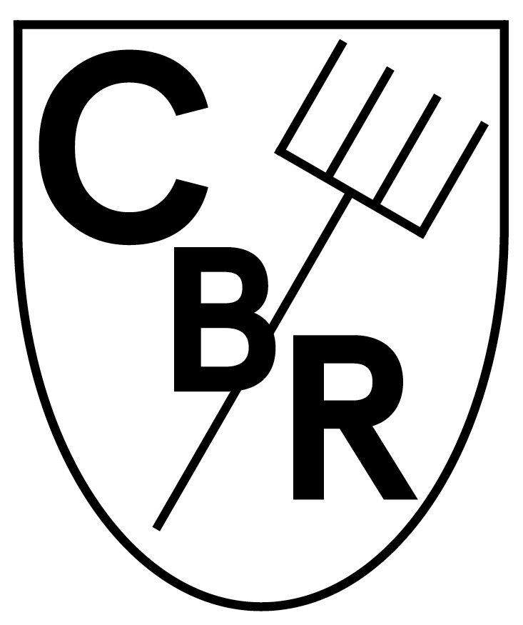 Logo: Ils Rumantsch / las Rumantschas